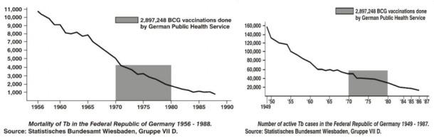 Fig. 31: Mortalitatea cauzată de tuberculoză în Germania. Sursa: Piersicuța.